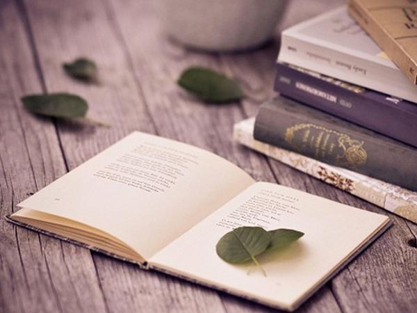 Ngành Văn học là gì? Chương trình đào tạo ngành Văn học