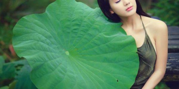Hồ Xuân Hương - bà chúa thơ Nôm của văn học trung đại Việt Nam